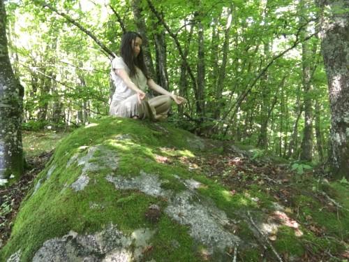 méditation sur la mousse